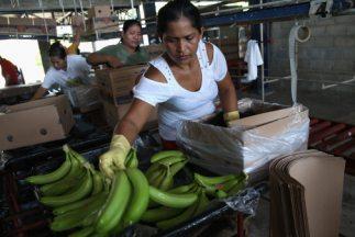 La segunda economía más grande de América Latina, registró un aumento de...