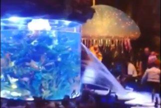 Acuario decorativo en restaurante de Downtown Disney, Orlando comenzó a...