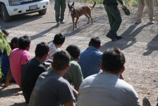 Autoridades rescataron a inmigrantes que fueron abandonados por 'polleros'.