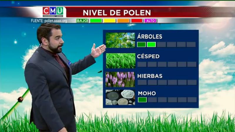 El tiempo: polen