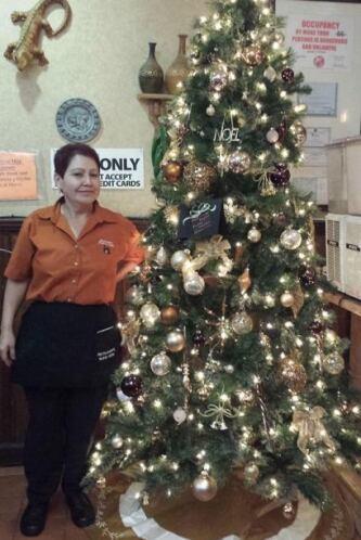 El Nuevo León compartió una foto de su árbol de navidad.