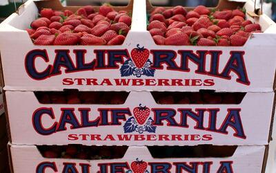 Fresas de California.