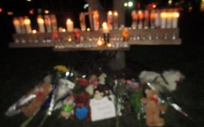 La tragedia en una escuela de Connecticut no ha sido ajena a nadie.