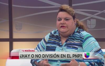 """Arremete contra el PPD JGo: """"Puerto Rico paga más taxes que cualquier es..."""