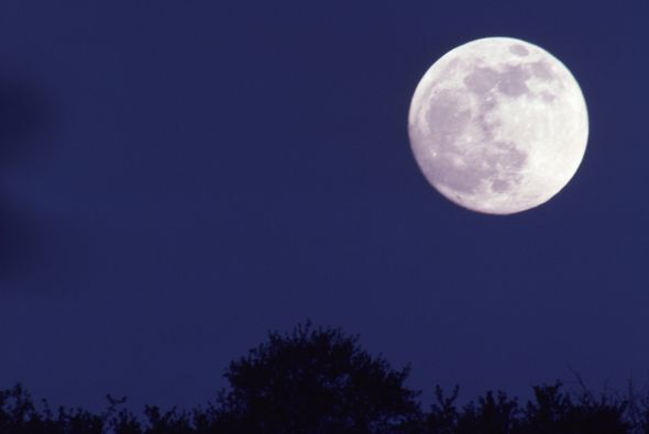 Era una noche de luna llena, ideal para brujerías.