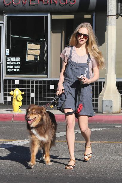 Amanda Seyfried sacó a pasear a su lindo perrito. Mira aqu&iacute...