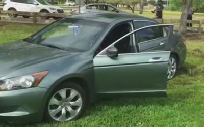 Una conductora de la tercera edad se estrelló contra una cerca del parqu...