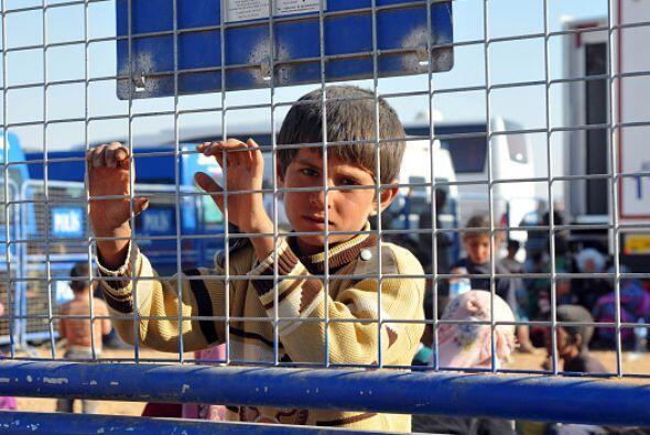 Estos años de guerra han dejado profundas cicatrices en los niños sirios...