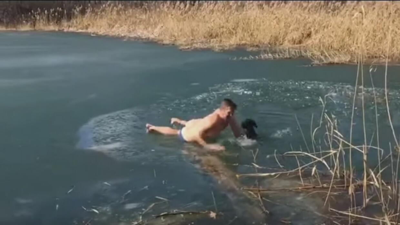 Este perro encontró a un héroe que luchó contra el hielo para rescatarlo