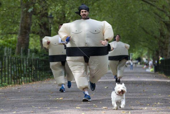 La carrera de sumos ya cuenta con un récord mundial Guinness por...