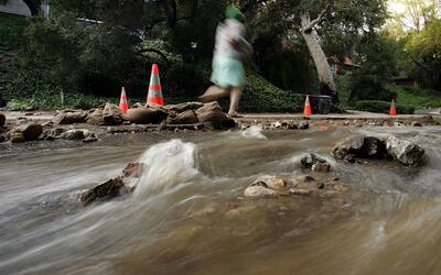 Un muerto, 12 rescatados y 54 árboles caídos, los estragos de la torment...