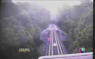 Dos mujeres se tiraron a las vías del tren para evitar ser atropelladas