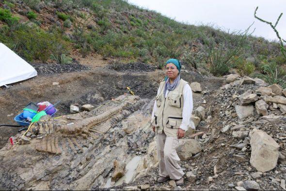 Lo anterior fue informado por la paleontóloga del Centro INAH-Coa...
