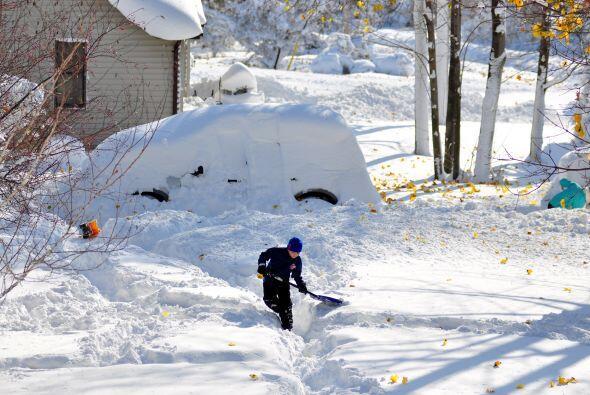 Este ha sido el panorama afuera de las casas en Buffalo.
