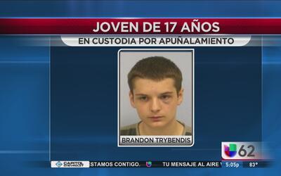 Joven en custodia por apuñalar al novio de su madre