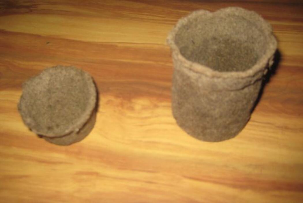 Originalmente pensaban que podían fabricar papel con las hojas del lirio...