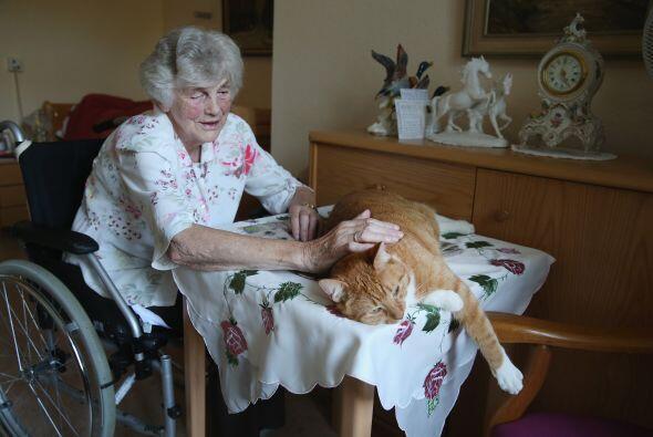 Eleonora de 84 años, una mujer del asilo que está en silla...