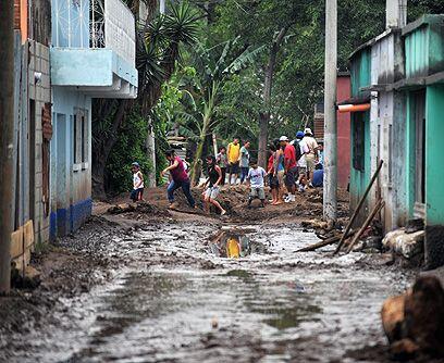 Deforestación descontrolada. La tala masiva de bosques en las montañas q...