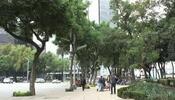 HSBC lavó dinero de cártel mexicano; pide disculpas por escándalo