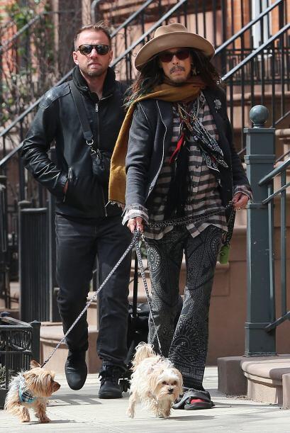 Pocos rockeros lucen tan bien como Steven Tyler al pasear a sus perros.