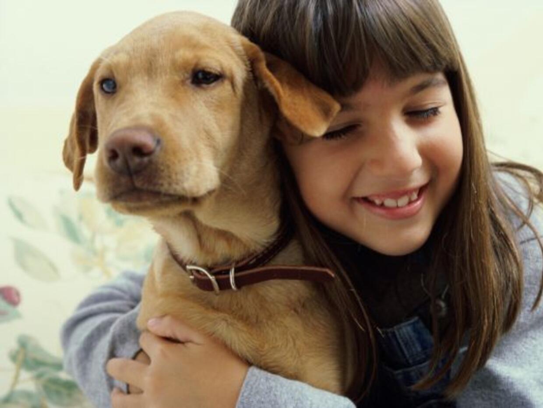 Si eliges un perro debes sabes que te llevas al mejor amigo del hombre p...