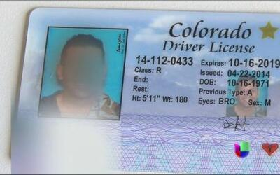Licencias a indocumentados en Colorado, una realidad