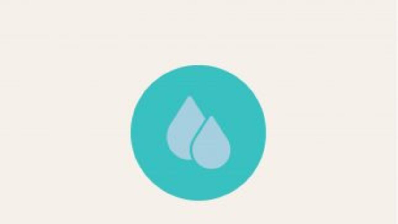 El agua transporta sustancias nutritivas esenciales en nuestro organismo...