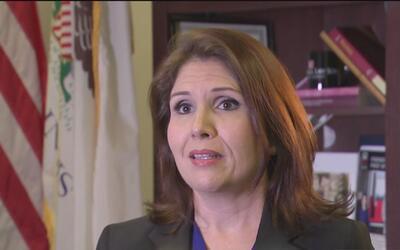 """Evelyn Sanguinetti: """"en Illinois todos estamos perdiendo, a no ser que t..."""