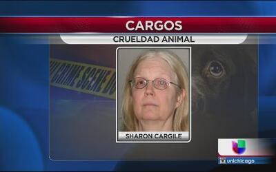 Cargos por crueldad animal