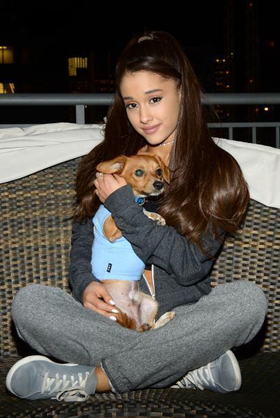 ¡Ariana Grande se une a una causa benéfica para apoyar y salvar a 15 cac...