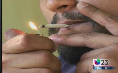 Legislador estatal apoya la marihuana recreacional en Florida