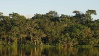 Arqueólogos franceses y ecuatorianos descubrieron en la Amazonía ecuator...
