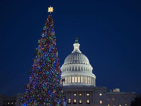 Un árbol de navidad decorado con luces cerca de la cúpula...