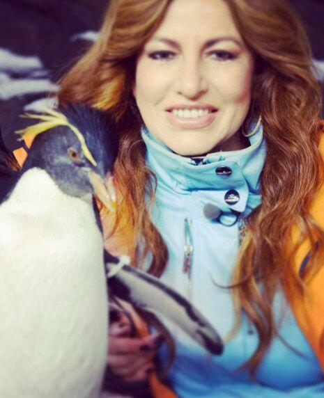 Imposible no quedar enamorado de estas bellas aves marinas que las acomp...