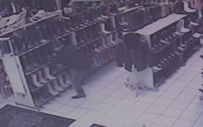 Queda registrado en video el robo de artículos exóticos en negocios hisp...