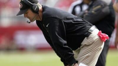 Jim Harbaugh (AP-NFL).