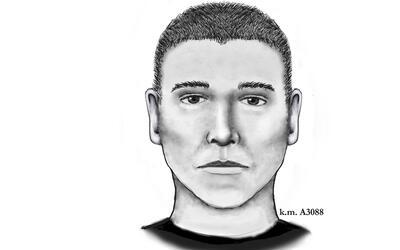 Retrato hablado del sospechoso de ser el asesino en serie de Phoenix