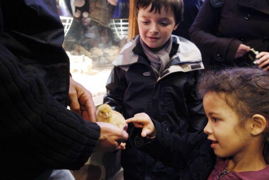Niños pequeños: Este rango de edad lo comprenden los niños que tienen la...
