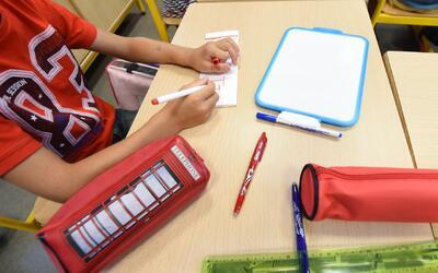 Opciones que tienen los alumnos después de la preparatoria