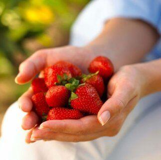 Hay diferentes tipos o variedades de fresa las cuales saben un poco dife...