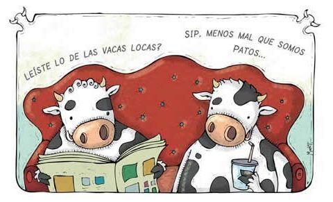 """""""¿Leíste lo de las vacas locas?""""   """"¡Sí! Menos mal que somos patos..."""""""