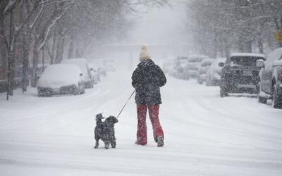 ¿Cómo se preparan en Chicago para la nevada que comienza este lunes 13 d...