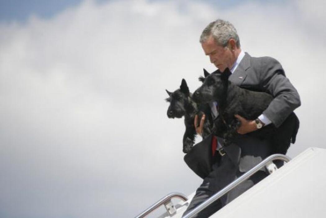 Barney actuó en nueve películas producidas por la Casa Blanca, incluyend...