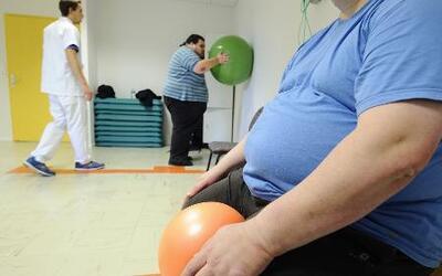 Obesidad: efectos dañinos de la grasa en el cuerpo