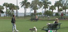 Controversia por parque para mascotas