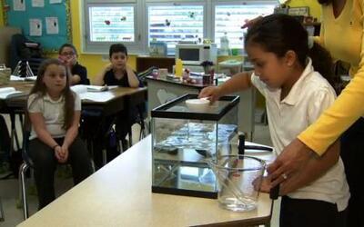 CPV: ¿Por qué es importante cuidar el agua fresca del Planeta?