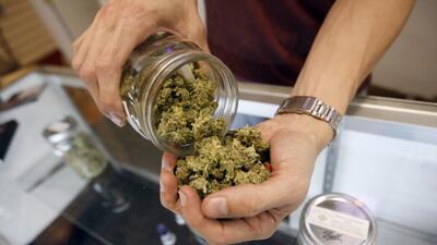 Aprueban uso de marihuana medicinal en Florida
