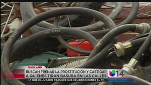 Buscan endurecer leyes contra prostitución y tiraderos ilegales de basur...