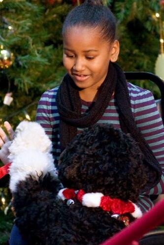 Bo, desde cachorro, conquistó no sólo a las hijas del presidente Malia y...