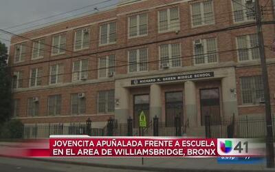 Niña fue apuñalada frente a escuela en El Bronx